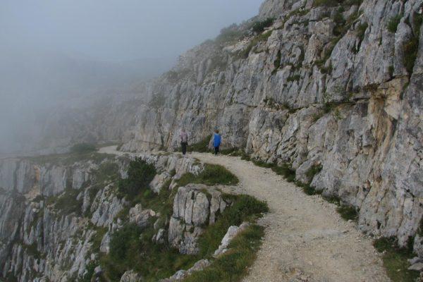 strada-52-gallerie-escursioni-valli-pasubio189